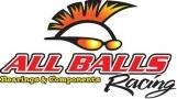 All Balls ALL BALLS